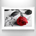 New Design Beauty Flower Art Painting Home Decor Rose Painting Print On Canvas