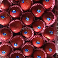 Red delicious variety and red color fresh apple
