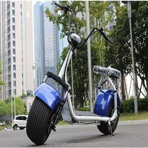 off-Road Electric Scooter 1600W Fat Tire 48V 12ah for Cross-Country