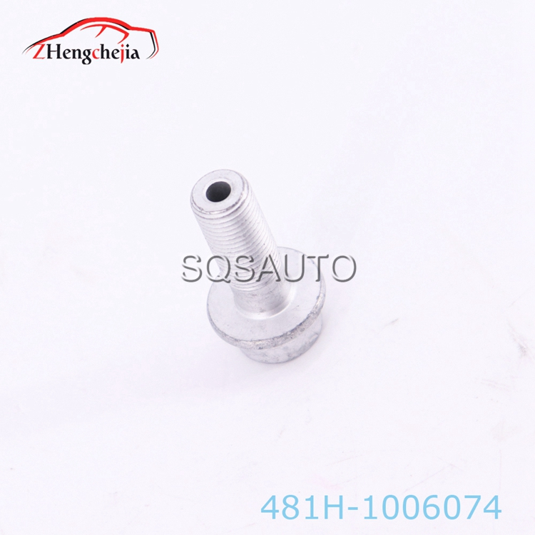 Auto parts exhaust Camshaft bolt for Chery 481H-1006074