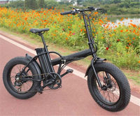 More Popular Chopper 48V 48v 750w electric bicycle for sale