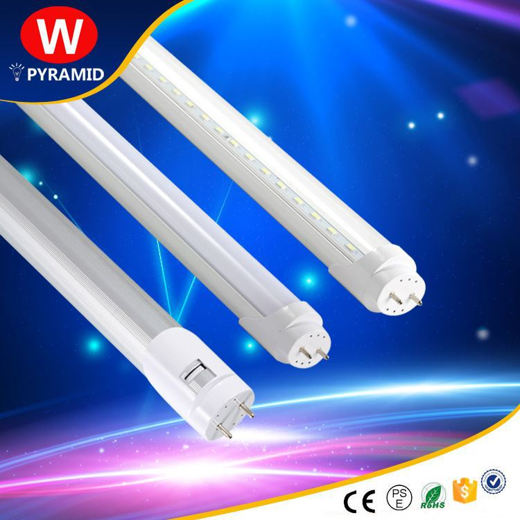 HOT SALE! led animal tube light