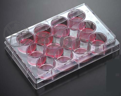 the best lab plate cell and tissue culture plate laboratory