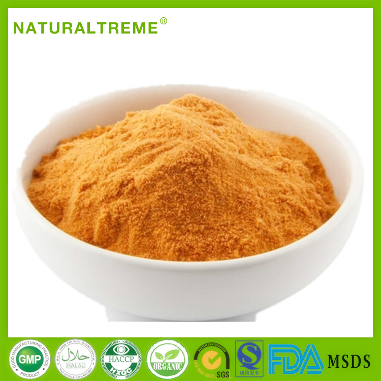 GMP Manufacturer Organic Goji Berry Extract