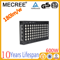 600 watt led stadium floodlights
