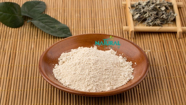 Vine Tea Extract 98% Dihydromyricetin DHM for Liver Protection