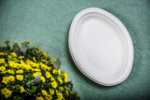 oval paper plate take away food container HT-P007