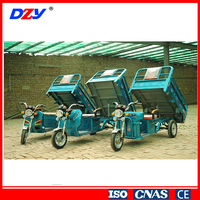 Pedal Cargo Electric Tricycle
