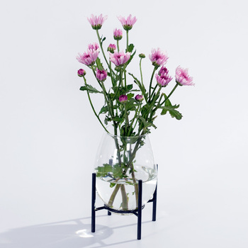 Home Decoration Glass Vase With Metal Base