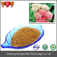 Good Quality Rhodiola Rosea Extract,Natural Plant Extract Powder