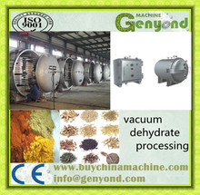 Vacuum Drying Machine for Large Container