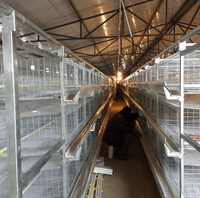 chicken use poultry farm hot galvanized chicken cage in India farm
