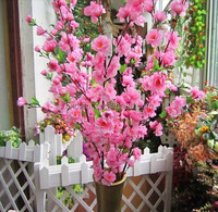 cherry blossom tree branches , cherry blossom stem for sale