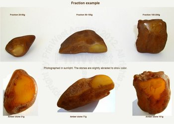 UKRAINIAN AND BALTIC ROUGH AMBER