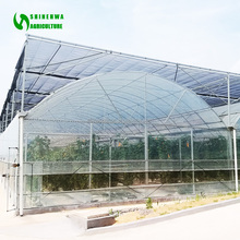 Gutter Connect Plastic Film Greenhouse