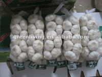 china garlic price 2012 ( 500g small package) , jinxiang garlic