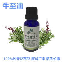 100%Pure natural oregano oil Animal Feed Additives wholesale oregano essential oil