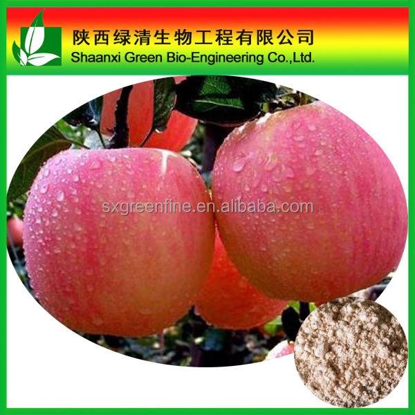 High quality natural Apple peel extract /phloretin powder 98% for USA