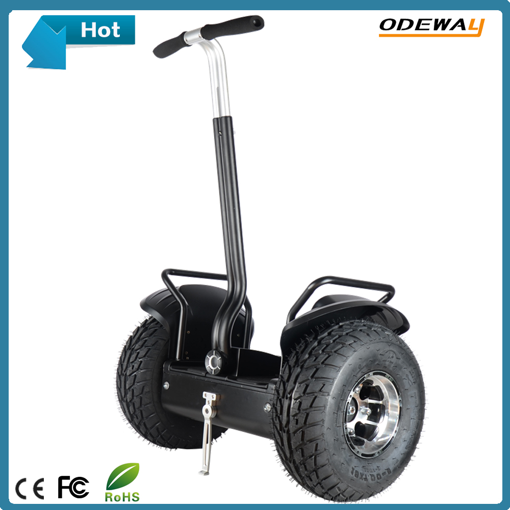 Best sell high quality 19inch electric scooter motorcycle with SGS CE certificate