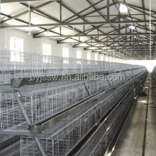 Poultry Farming Equipment /Hen Cage / Egg Laying Chicken For Sale