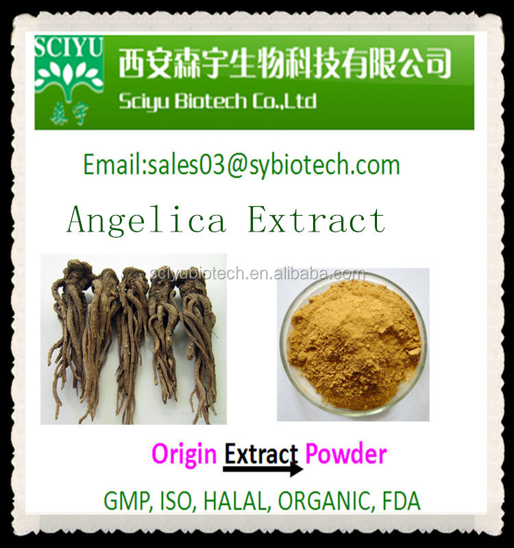 Natural Plant Angelica Root Extract 1% Ligustilide free sample