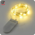 Chrstmas Decoration Party Favor Latest TypesMicro Mini Led Battery Lights