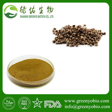 Radix Polygoni Multiflori extract/polygoni multiflori extract with best quality