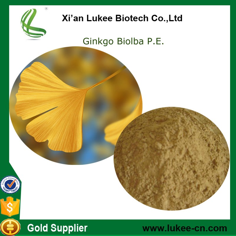 Chinese manufacturer supply hot sale ginkgo biloba extract with competitive price