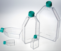 Disaposable Cell and Tissue Culture Flask