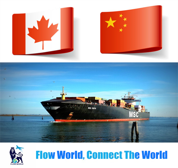 Hot sale ocean freight service to canada from China