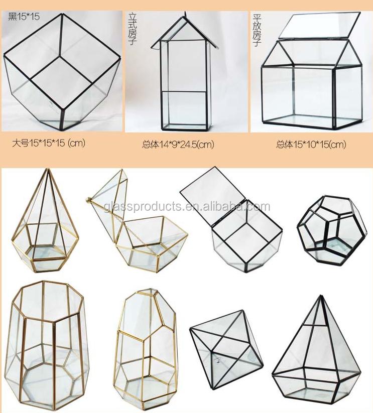 geometric terrarium.png