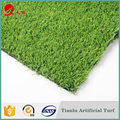 Landscaping Artificial Grass Carpet