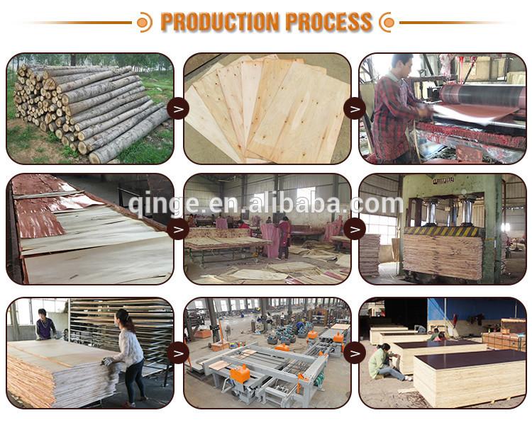 Factory direct sale 15mm Film Faced Poplar Plywood