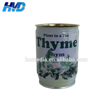 691# Empty thyme seeds flower tin can