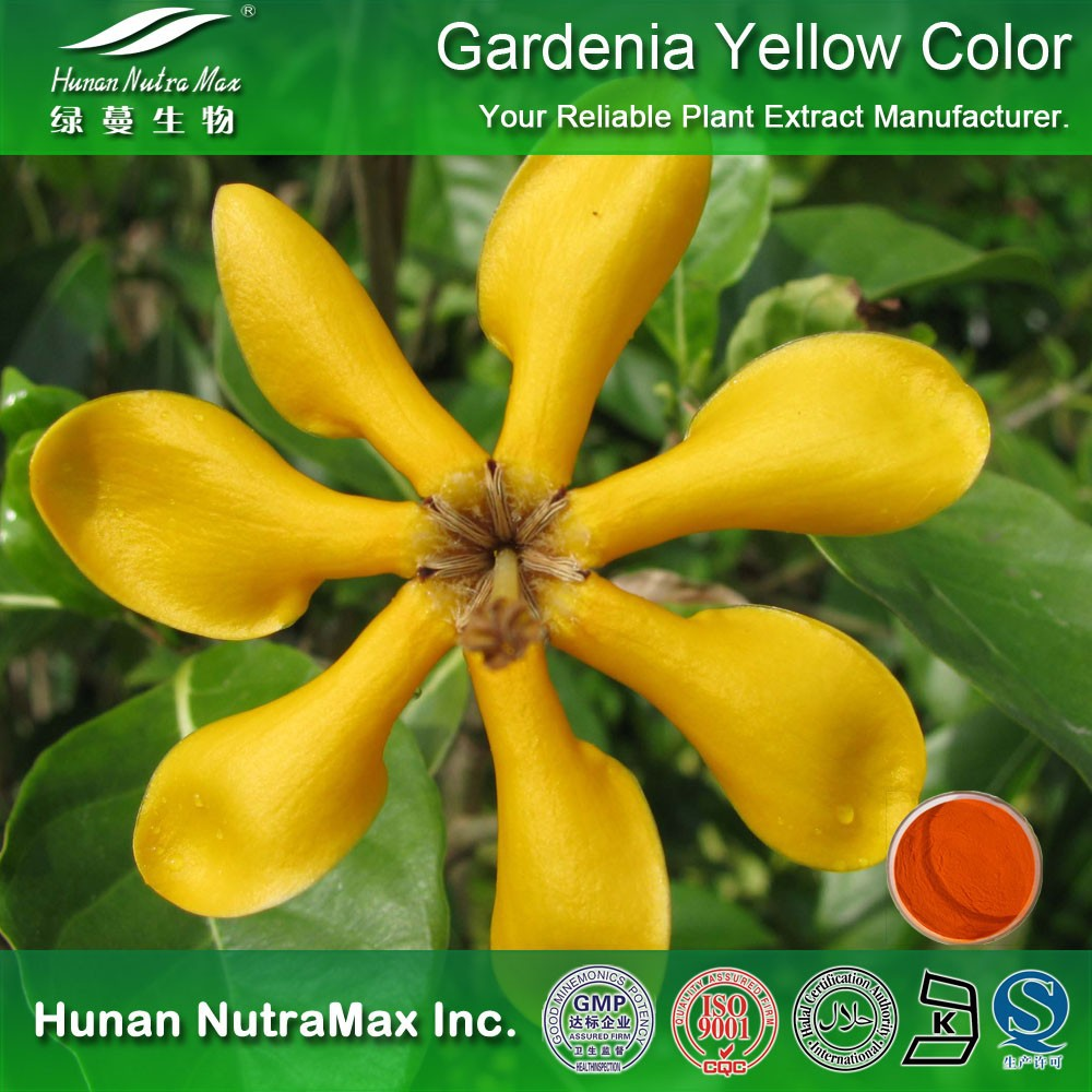 100% Natural Food Coloring Gardenia Yellow Color Pigment Powder