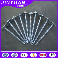 umbrella head electro galvanized twist wire roofing nail with washer Hebei Factory