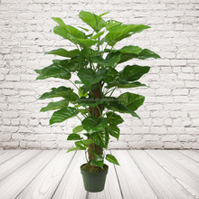 Artificial Pothos Plants On Coconut Pole