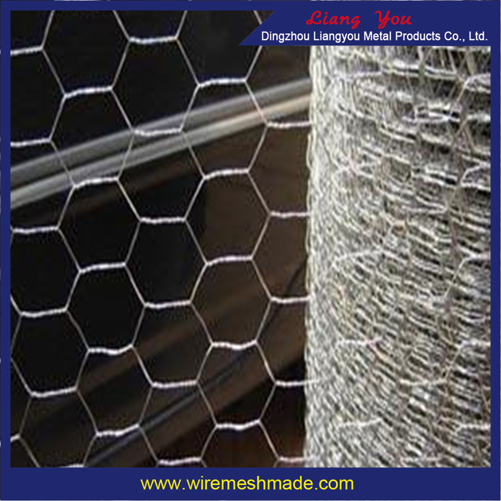 hexagonal wire mesh is a brief Shijiazhuang yunchong trading co,ltd has a stronger enterprise based on set of electro galvanized welded wire mesh, concrete nails lowes,plastic steel strapping roll,pvc coated hexagonal wire netting ,processing,manufacturing and sales.