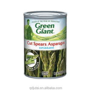 High quality Fresh canned green/white Asparagus