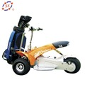 3 wheels single seat electric golf cart