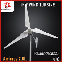 1kw family use low noise wind power generator for selling
