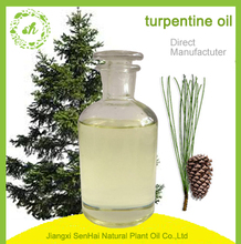 therapeutic grade pure natural pine needle essential oil pine nut oil