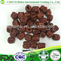 Dried chinese jujube dried dates