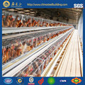 Animal Cage For Layer /Battery Chicken Cage / Poultry Chicken Coop