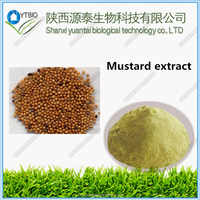 Hot Sale 100% Natural Organic Mustard Seed Extract//Mustard Seed Extract powder