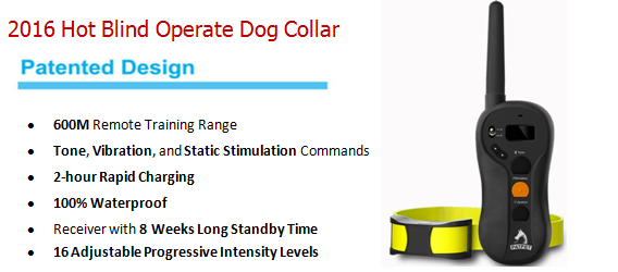 2016 Amazon Hot ECMA Standerd Remote Pet Dog Training E Collar Electric Shock Device