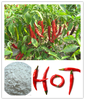 Factory 100% Natural organic Capsicum Extract Powder/Capsicum annum L./Capsaicin