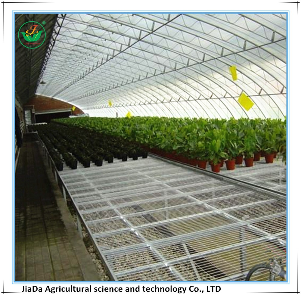 Economical green house used in modern agriculture