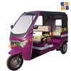 2016 best quality new model TEB-88 Luxury three wheel Electric rickshaw for Passenger