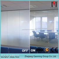 Environmental Protection Switch Transparent Glass